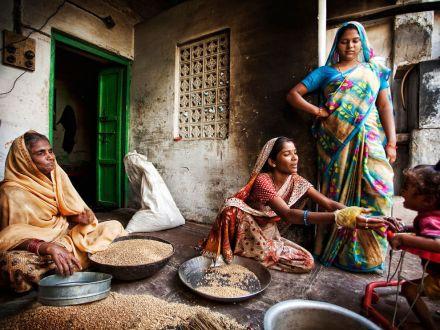 sorting-wheat-india_10926_990x742